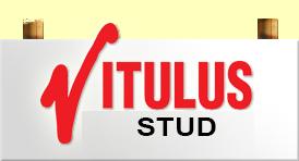Vitulus Lowline Stud